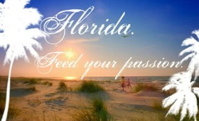 "Visit Florida<br><span style=""font-size:18px;"">""Feed Your Passion""</span>"